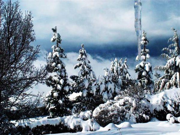 m_אודם בשלג